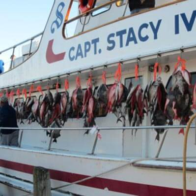 The-Captain-Stacy-Fishing-Fleet