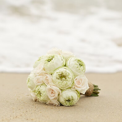 Beach Wedding Vendors