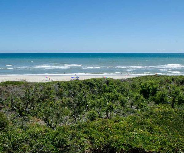 Featured Property Ocean Club B201 - Ocean Views