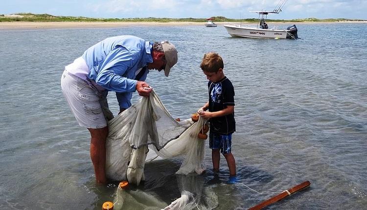 Customize an ecology tour with Crystal Coast Ecotours