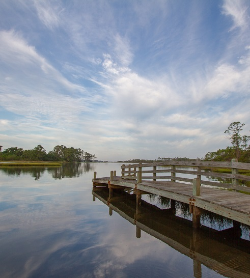 Scenic Views at Patsy Pond Nature Trail