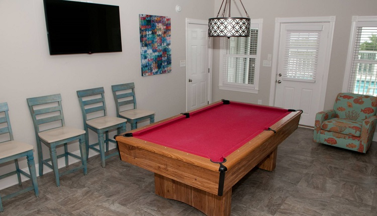 A Dolphin Watch - Game Room