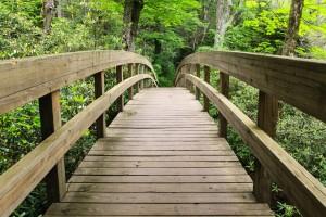 Trails 3 01-08-15