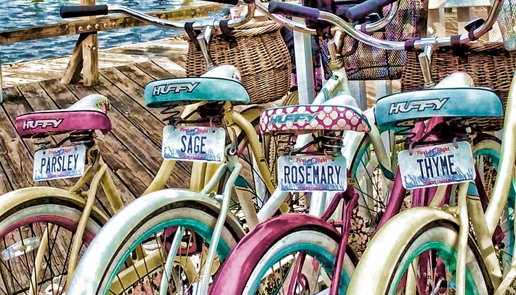 Biking Tours with Hungry Town Tours in Beaufort, NC