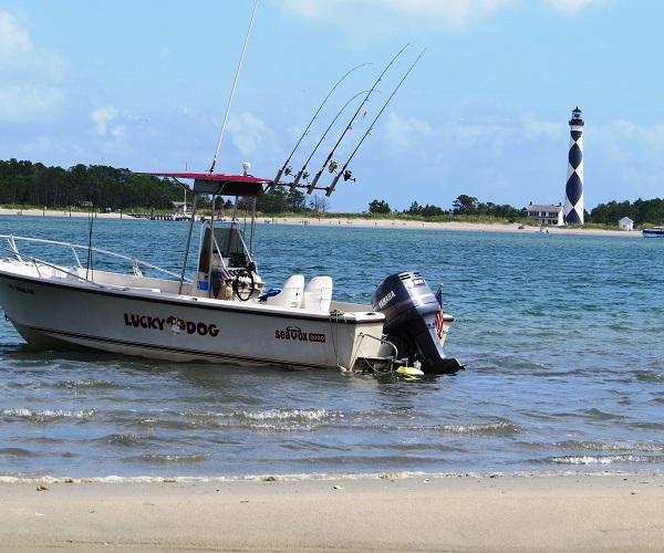 Crystal Coast Ecotours - Cape Lookout Cruises
