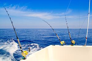 Blog Rods Ocean