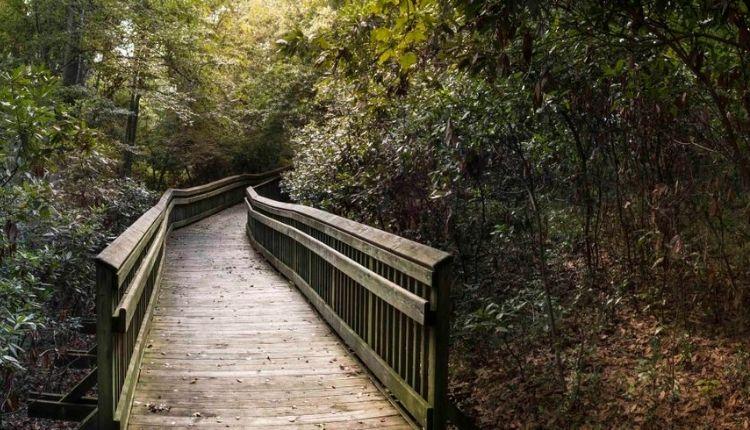 Emerald Isle Woods Park
