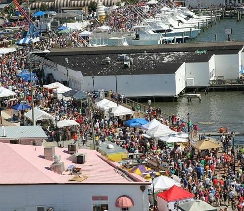 NC Seafood Festival - Fall Festivals