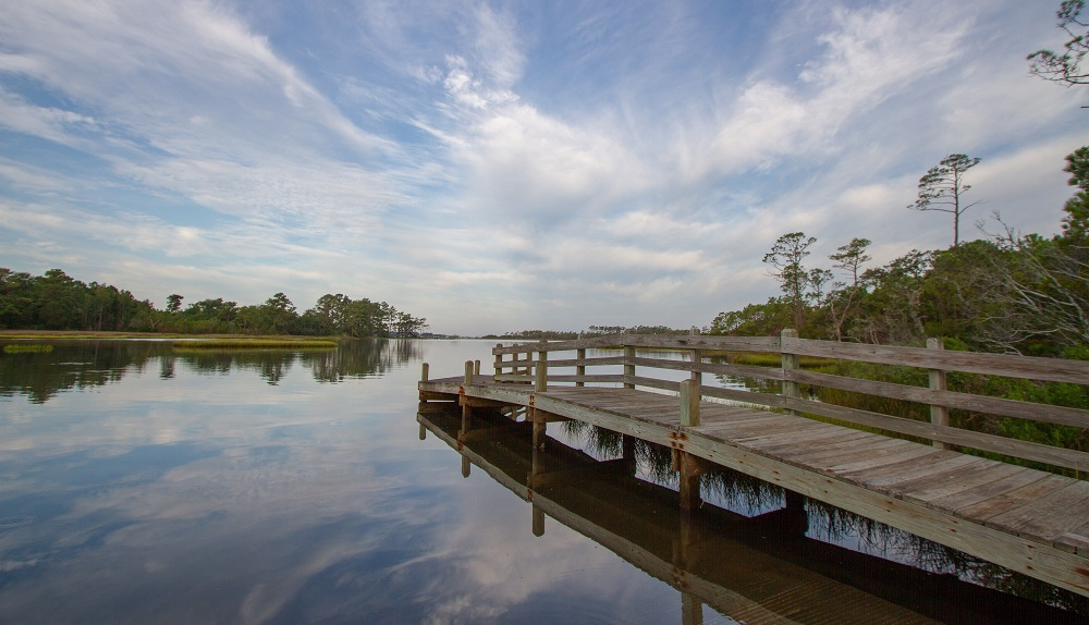 Croatan National Forest - Pet Friendly Things to Do in Emerald Isle