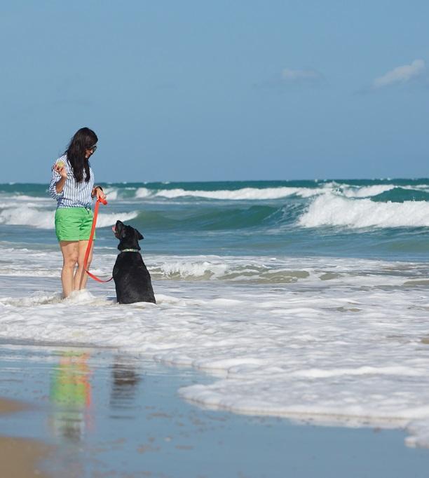 Pet Friendly Things to Do on North Carolina's Crystal Coast