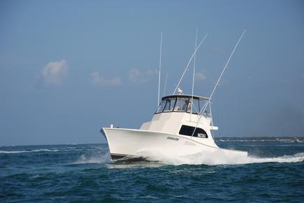 Energizer Sportfishing Fishing Charter Boat