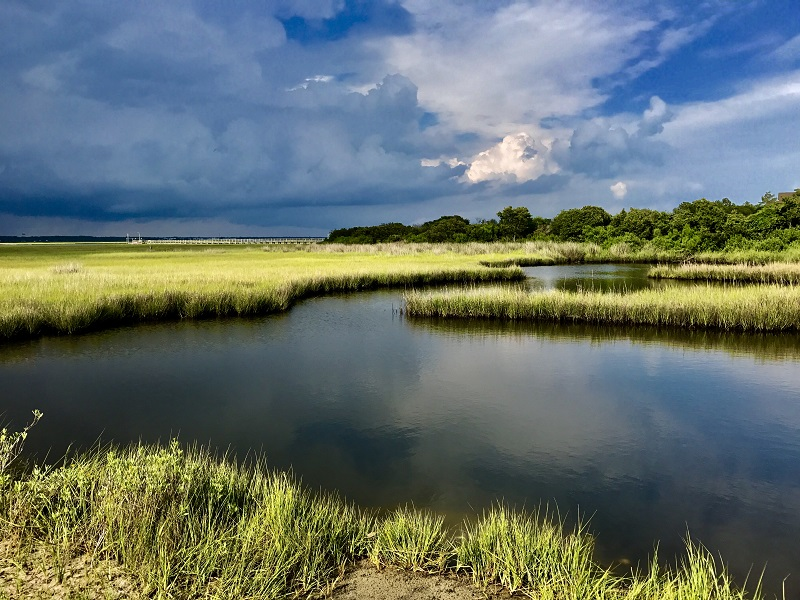 Saltwater Marshes in Emerald Isle, NC