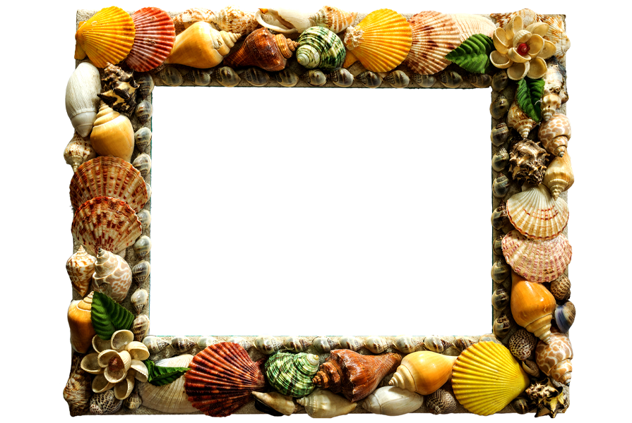 Shell-Craft-Ideas-Picture-Frame