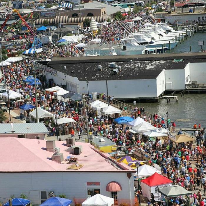 NC Seafood Festival - Morehead City, NC