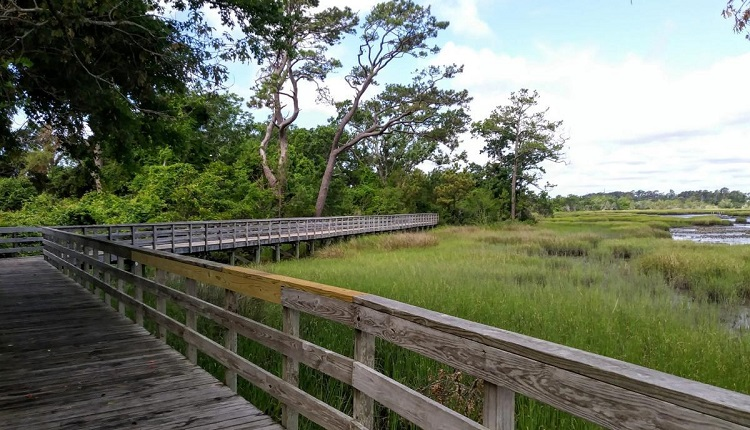 Calico Creek Boardwalk in Morehead City, NC