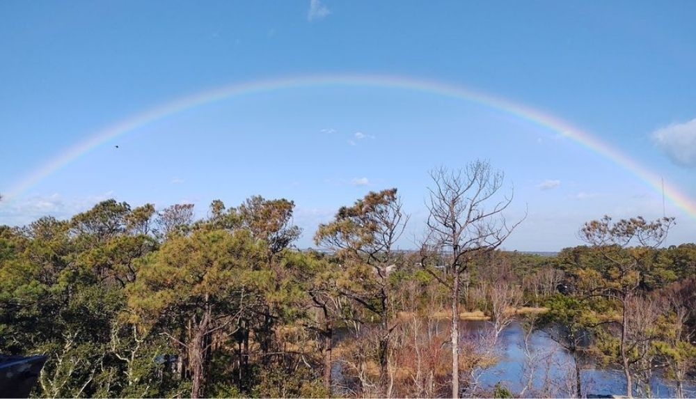 Rainbow over Willow Pond Trail