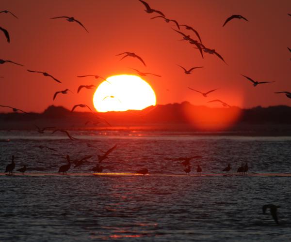 Bogue-Inlet-sunset-over-Bear-Island