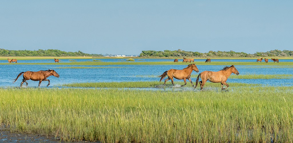 Emerald Isle, North Carolina Parks & Outdoor Things to Do