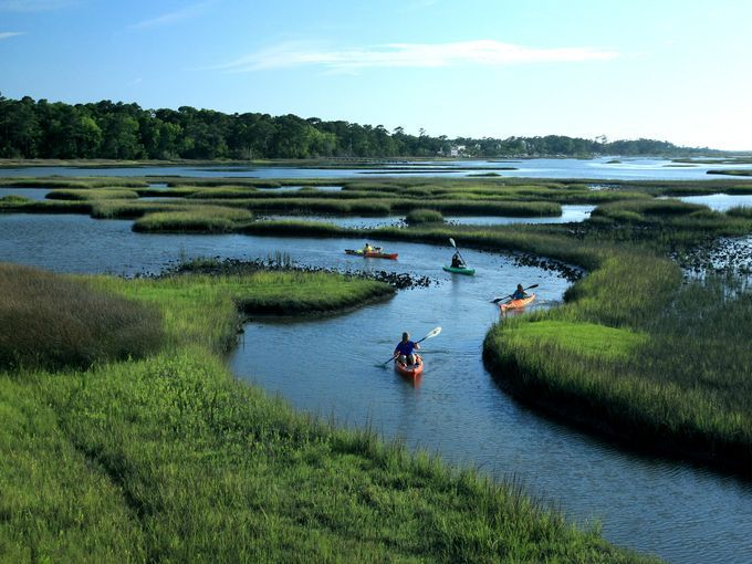Go kayaking and explore Bogue Sound