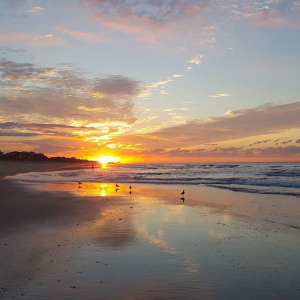 Plan the Perfect Fall Vacation to North Carolina's Southern Outer Banks