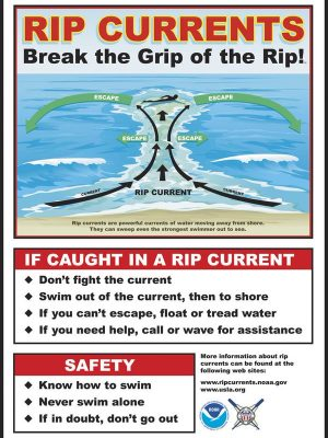 Rip Current Safety Diagram