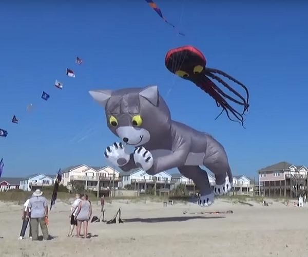 Carolina Kite Festival
