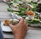 Crystal Coast Oyster Festival