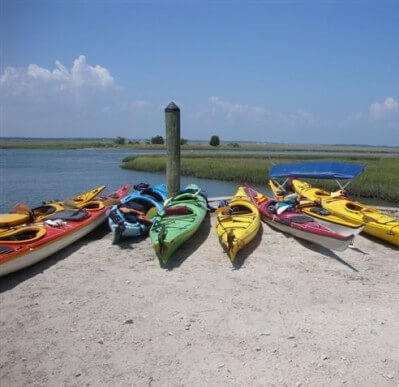 5 Things Your Kids Must See and Do in Emerald Isle - Hammocks Beach