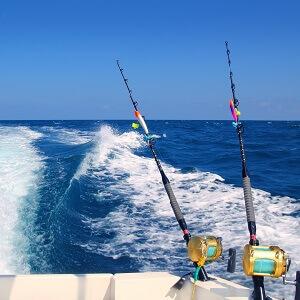 Fishing charters in emerald isle north carolina deep sea for Nc deep sea fishing charters